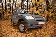Dirty black car on glade in autumnal forest. Day Royalty Free Stock Photography