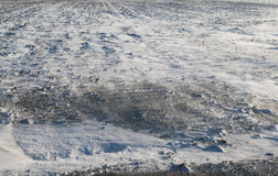 Dirty and  blowing snow Royalty Free Stock Photos