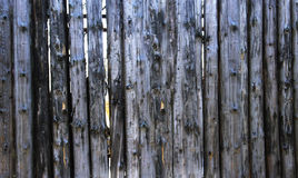 Dirty blue Old Log Cabin Wall Texture. Dark Rustic House Log Wall. Horizontal Timbered Background Royalty Free Stock Image