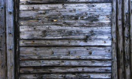 Dirty blue wood texture. background old panels with dirty blue Large wooden shield, billboard Stock Photography
