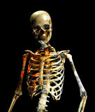 Dirty Bones. Skeleton figure with a dirty texture overlay to give the impression of decay Stock Image