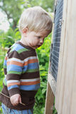Dirty boy looks into the rabbit hutch Stock Photos
