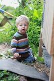 Dirty boy outdoor. Garden, summer time Stock Image