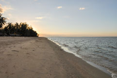 Dirty brown sand beach stock photos