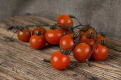 Dirty brunch of cherry tomatoes just harvested and unwashed Royalty Free Stock Photo