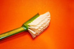 Dirty Brush Royalty Free Stock Images
