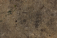 Dirty burlap texture Stock Photo