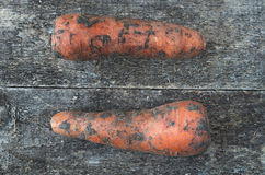 Dirty carrot. Organic dirty carrot whole on the wooden rustic background, top view. Carrot Background. Vegetable Royalty Free Stock Images