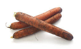 Dirty carrot Stock Photo