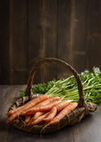 Dirty Carrots Royalty Free Stock Image