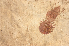 Dirty cement floor, blood stains Stock Photography