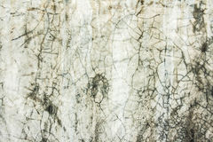 dirty cement wet wall Stock Image