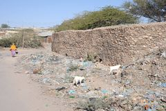 Dirty city Hargeisa. Garbage in the African city Royalty Free Stock Image