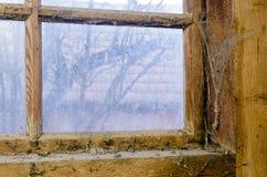 Dirty cobwebbed window Stock Photos