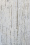 Dirty concrete wall Stock Images