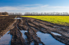 Dirty country road between agricultural fields in central Ukraine at sunny autumnal day Royalty Free Stock Images