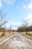 Dirty country road with puddles in early spring Stock Photos