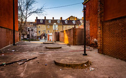 Dirty courtyard and houses in Baltimore, Maryland. Stock Photos