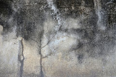 Dirty and crack concrete wall with stain of lichen and mold, tex Stock Image
