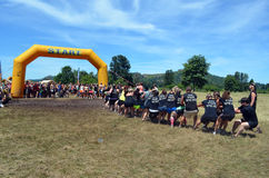 Dirty Dash starting line Stock Photography