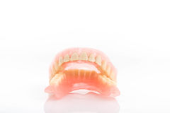 Dirty dentures,Tartar on dentures on white background Stock Photography