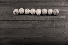 Dirty eggs Royalty Free Stock Images