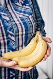 Dirty farmer hands holds yellow ripe banana fruit.  Stock Photo