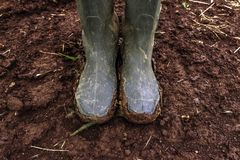 Dirty farmer`s rubber boots on muddy country road. Agronomist is walking the pathway through cultivated fields after heavy rain storm stock image