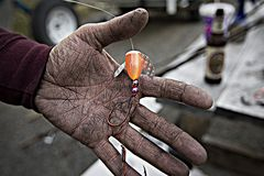 Dirty Fisherman. A filthy man hand holding a fishing lure Royalty Free Stock Image