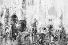 Dirty and flaked old wall texture in black and white. Color Stock Image