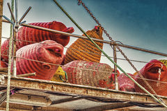 Dirty floating buoys Royalty Free Stock Images