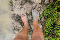 Dirty Foot over mud. In Paddy rice farmland Stock Images
