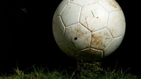 Dirty football bouncing on grass. In slow motion stock video footage