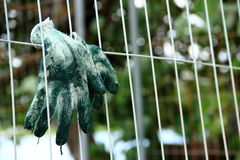 Dirty gloves hanging on the fence Stock Photos