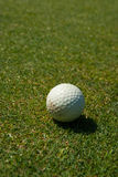 Dirty golf ball on the course Stock Photo