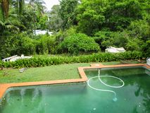 Dirty green swimming pool with vaccum in it in very green tropical setting with roofs of other houses showing through the trees royalty free stock photo