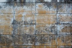 Dirty grunge cement wall texture. Backdrop for design Royalty Free Stock Images