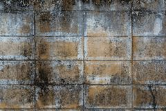 Dirty grunge cement wall texture. Backdrop for design Royalty Free Stock Photos