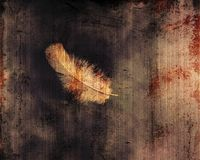 Dirty grunge feather Stock Images