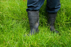 Dirty gumboots. Farmer with dirty gumboots standing in green grass Stock Images
