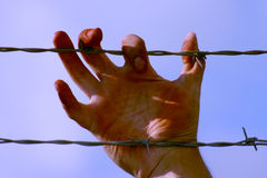Dirty Hand. Holding a couple strands of barbed wire Royalty Free Stock Photo