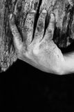 Dirty Hand Holding Weathered Wooden Planks Stock Image