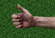 Dirty hand of a man with thumbs up  on green grass Stock Image