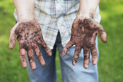Dirty hands. A Man showing dirty hands after gardening work Stock Photo
