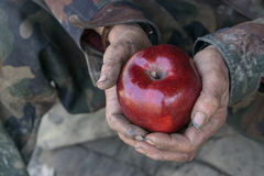Dirty hands and fresh apple Royalty Free Stock Image
