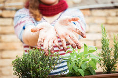 Dirty hands of soil Royalty Free Stock Images