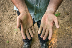 Dirty hands of a worker man Royalty Free Stock Photo