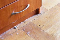 Dirty hardwood floor with dust. Dirty unswept hardwood parquet floor with dust royalty free stock images