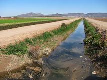 Dirty irrigation ditch. Polluted irrigation ditch in the imperial valley, southern California Royalty Free Stock Photos