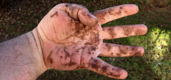 Dirty man hands , close up Stock Image